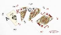 Jeux de 52 carte Fournier  poker Vision Bleu